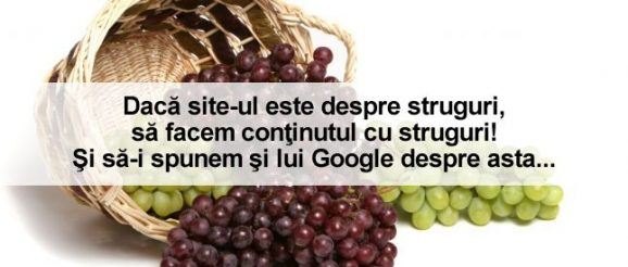 blog despre optimizare seo