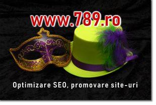 optimizare site
