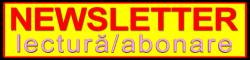 SEO Timisoara newsletter