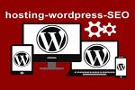 optimizare SEO hosting si web desing