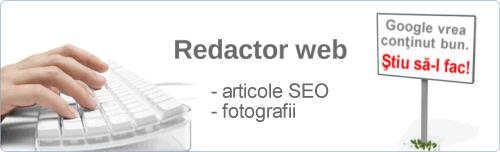 redactor-web-timisoara