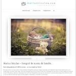 optimizarea SEO a unui site de fotograf de nunta