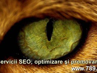 promovarea unui site si SEO