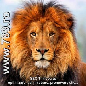 reclama cu promovarea unui site