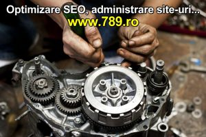 optimizare SEO motor