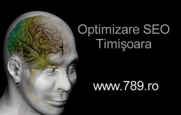 optimizare seo Timisoara