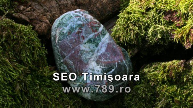 seo Timisoara