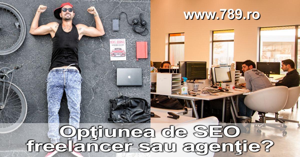 agentie sau freelancer