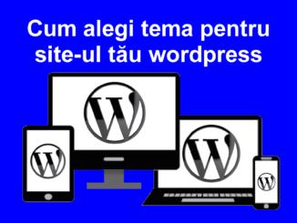 tema de wordpress pentru site