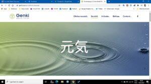 optimizare continut site pentru desktop