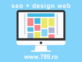 seo web design timisoara