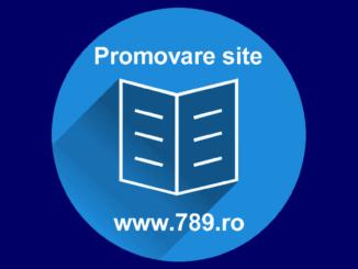 promovare site Timisoara
