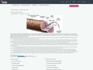 copywriting subiecte medicale