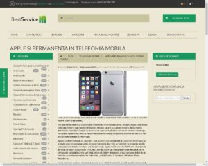 SEO servicii IT Timisoara